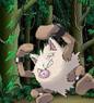 Benutzerbild von Tarzan