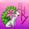 Shaymin-friend