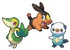 Artwork der Starter-Pokémon ツタージャ (Tsutāja), ポカブ (Pokabu) und ミジュマル (Mijumaru)